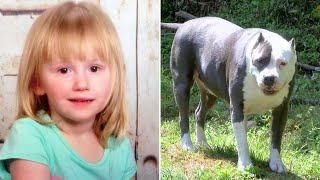 Missing 2-Year-Old Toddler Survives For Nearly Two Days In The Woods Thanks To An Unlikely Hero