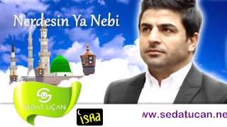 Sedat Uçan / Nerdesin Ya Nebi