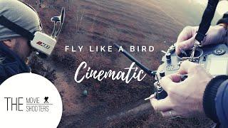 Cinematic FPV | New Skill