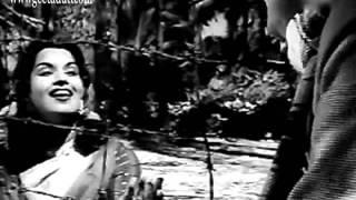 Musafir Khaana - Dil De Daala Nazraana - Geeta Dutt