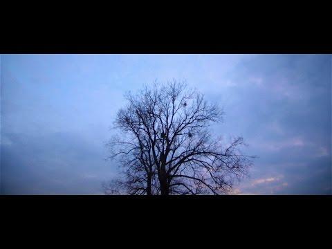SUMMER STUDIO production | Юрій Марковський, відео 23