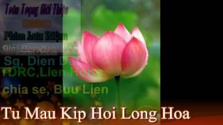PGHH ( Buu Lien ) Tu Mau Kịp Hội Long Hoa