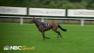 Royal Ascot 2019: Horse throws jockey, runs riderless | NBC Sports
