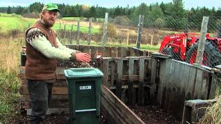 Food Scraps for Chicken Feed