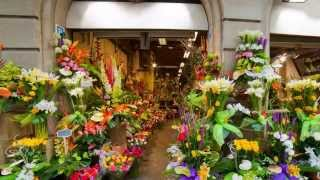 preview picture of video 'Florist Parkersburg WV - Flower Shops Deliver Anywhere'