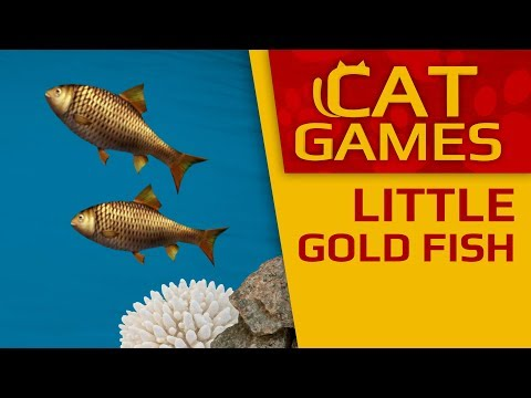 Download Cat Games Entertainment For Cats To Watch Mice And Birds