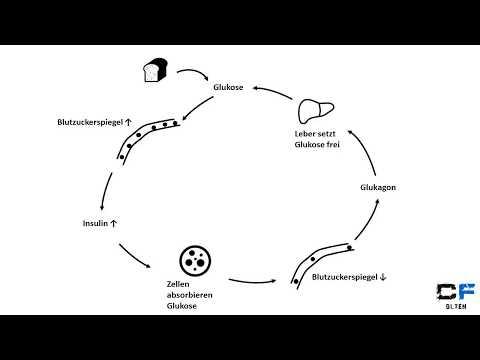 Blutzucker in der biochemischen Analyse von Blut
