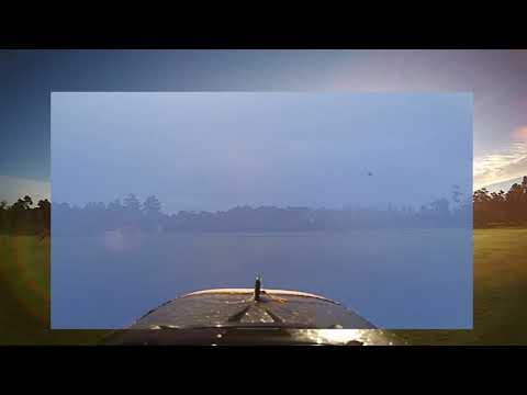 firefly-action-cam--zohd-dart--tree-hugger
