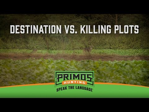 Planning Destination Vs. Kill Plots video thumbnail