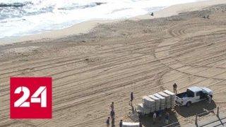 Ураган Флоренс согнал с места корабли ВМС США и авиацию - Россия 24