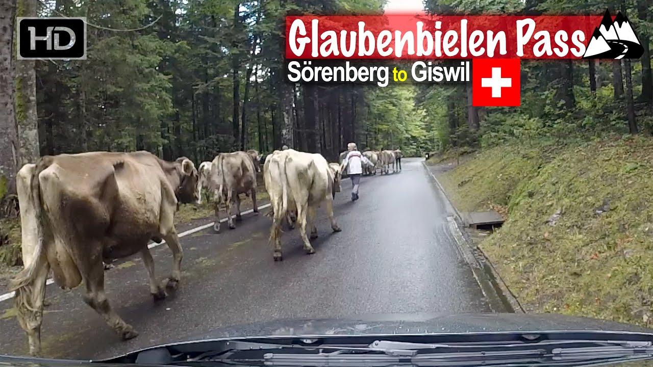 Sörenberg to Giswil via Glaubenbielen Pass and dodging cows – Scenic Drive Switzerland!