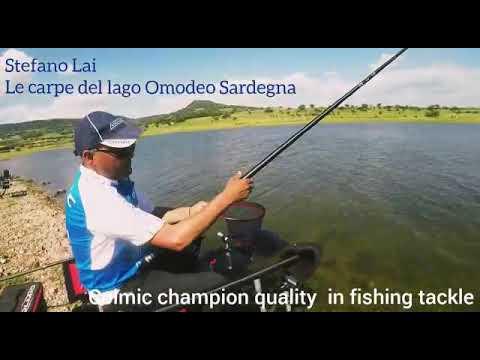 La pesca su un satisa