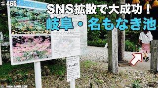岐阜関市モネの池SNS拡散力の強さ広告費はゼロ円?!