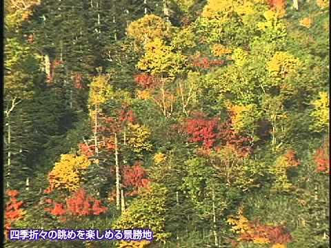 称名滝 絵画のような紅葉の旅