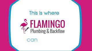 When You Think Bathroom Remodeling, You Should Think Flamingo Plumbing! Video