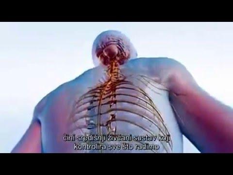 Hipertenzija, hipotenzija uzroci