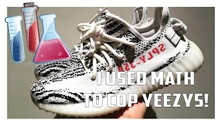 Zebra Yeezy Boost 350 Copped Using Math!