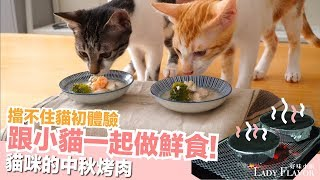 小貓一起做中秋鮮食!擋不住貓初體驗~【貓副食食譜】好味貓廚房EP113