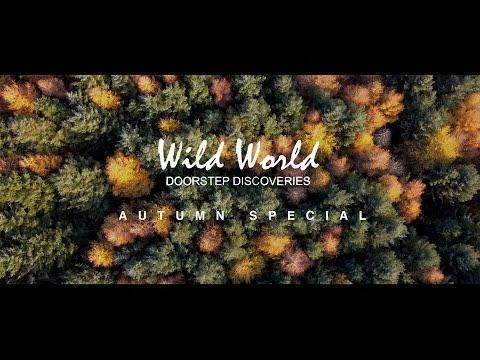 Wild World, Doorstep Discoveries - Autumn Special