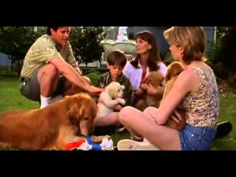 The Retrievers DVD movie- trailer
