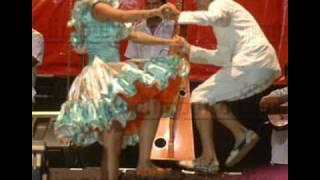 Video La Nostalgia de Simon de Zaimara Hernández