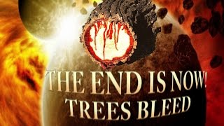 End Sign Trees Bleed