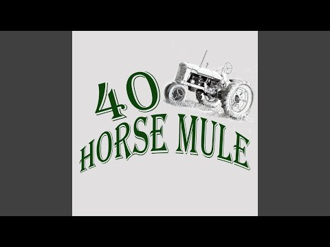 40 Horse Mule - Hell, Fire and Brimstone