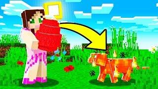 Minecraft: WIZARD SIMULATOR! (USE MAGIC & GET PETS!) Modded Mini-Game