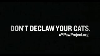 Declawing your cat is a thing now?