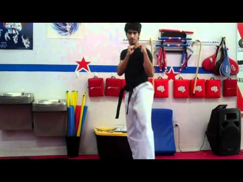How to Roundhouse Kick Dollyo Chagi