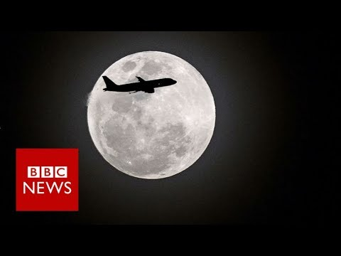 The 'super blue blood Moon' across the world - BBC News