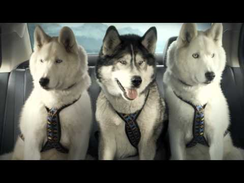 Suzuki Super Bowl Commercial - With 50 Cent - Suzuki Kizashi - Mush See - New Sled