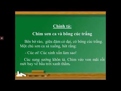 CHÍNH TẢ LỚP 2 - CHIM SƠN CA VÀ BÔNG CÚC TRẮNG - GV NGUYỄN THỊ THU HOÀI - TH TRƯNG VƯƠNG