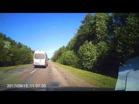 Лось выскочил на дорогу прямо под колёса микроавтобуса
