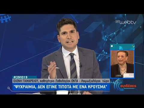 Ελένη Γιαμαρέλου : Covid-19, ψυχραιμία, δεν έγινε τίποτα με ένα κρούσμα | 26/02/2020 | ΕΡΤ