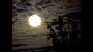 Bad Moon Rising by Jerry Lee Lewis and John Fogarty