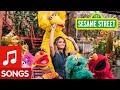 Sesame Street: Maren Morris sings Oops! Whoops! Wait, Ah ha! Song