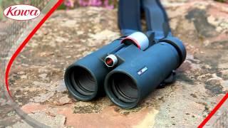 Бинокль Kowa BD 10x42 XD Prominar от компании Путешественник - видео