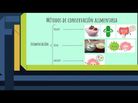 Importancia de la higiene en los alimentos