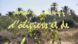 preview picture of video 'DJERBA HEBERGEMENT  :LA VILLAKHAWA AVEC DJERBAVACANCES'