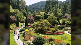 تحميل اغاني الملحون :سرابة فصل الربيع إحتفاء بالجمال .كل ربيع و أنتم بخير .محمد روبا .Title MP3