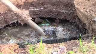 How to Unplug a Toilet & Fix Your Septic System