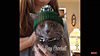 Easy Crochet A Cat Hat   Easy Crochet Beanie With Ear Holes   Bag O Day Crochet Tutorial #336