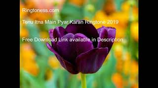 Tenu Itna Main Pyar Karan Ringtone  Hindi Ringtones Ringtoness