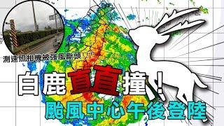 「白鹿」颱風快速直撲!估中心午後登陸