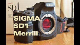 Sigma SD1 Merrill (deutsch)