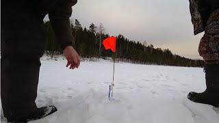 Рыбалка нижний тагил леневское водохранилище