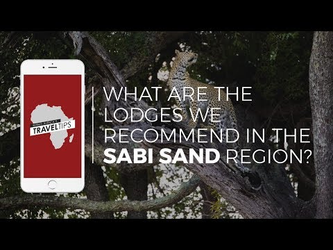 What are the lodges we recommend in the Sabi Sand region? Rhino Africa's Travel Tips