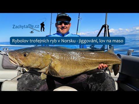 Rybolov trofejních ryb v Norsku