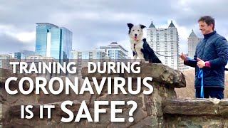 How do you practice and socialize your canine throughout the Coronavirus pandemic?